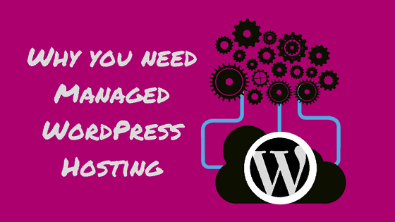 managed wordpress hosting, Prairie Giraffe, Gillette, Wyoming