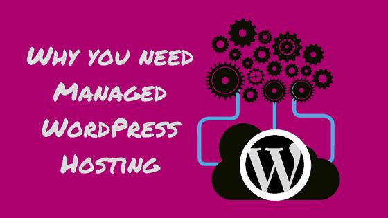 managed wordpress hosting, Prairie Giraffe, Gillette, Wyoming